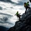 Tout savoir sur le sauvetage animalier en montagne