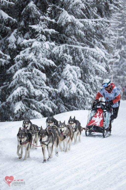 LEKKAROD Les 18,19,20 et 21 mars Bessans – Bonneval-sur-Arc (Savoie)