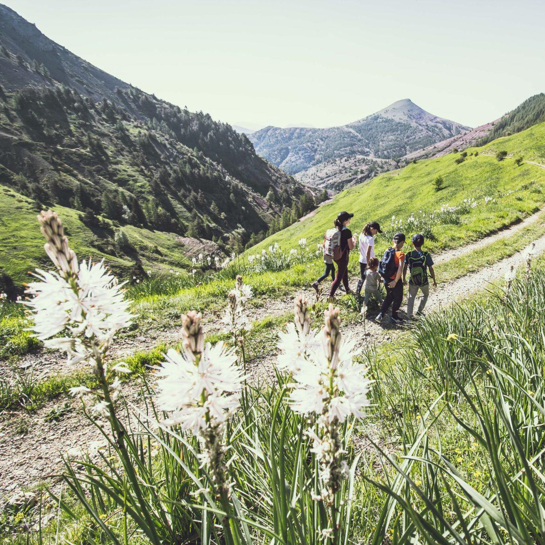 Cet été, la Maison des guides des Portes du Mercantour à Valberg vous propose de nombreuses activités. Pour nous en parler, Cédric Robion, accompagnateur en montagne, moniteur VTT et membre du bureau des guides OEROC. Il est notre invité de la semaine sur Oxygène.
